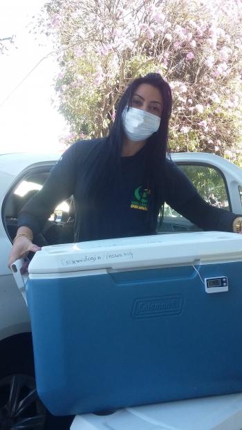 Na foto, a servidora Thais Andrade Lima, da Secretaria Municipal de Saúde de Passos,  com as doses para o município de Passos.