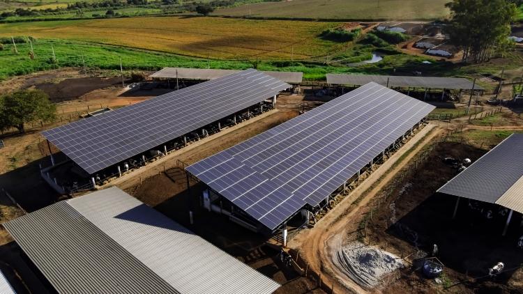 Fazenda Recanto Grão Mogol, localizada na zona rural de Carmo do Rio Claro.