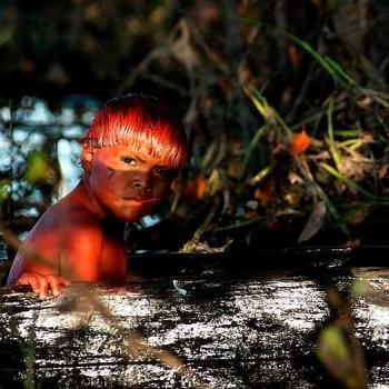 Renato Soares retrata o universo dascrian�as do Xingu.